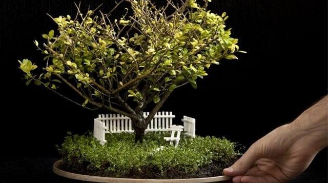Sevdiklerinize Alabileceğiniz En İlginç Minyatür Bahçeler