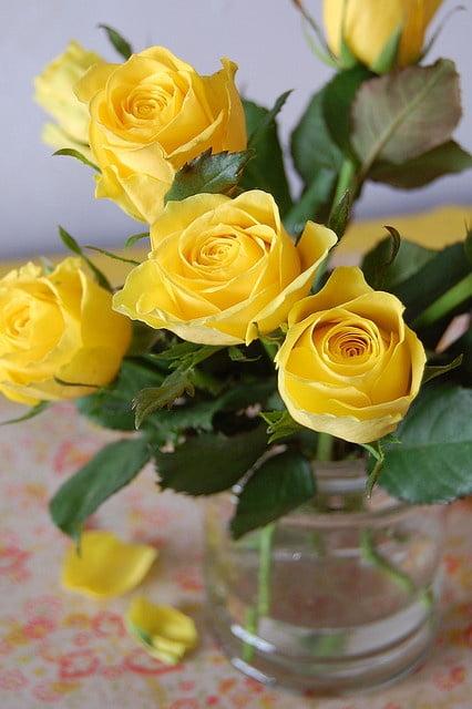 En Güzel Çiçekler ve Anlamları-2