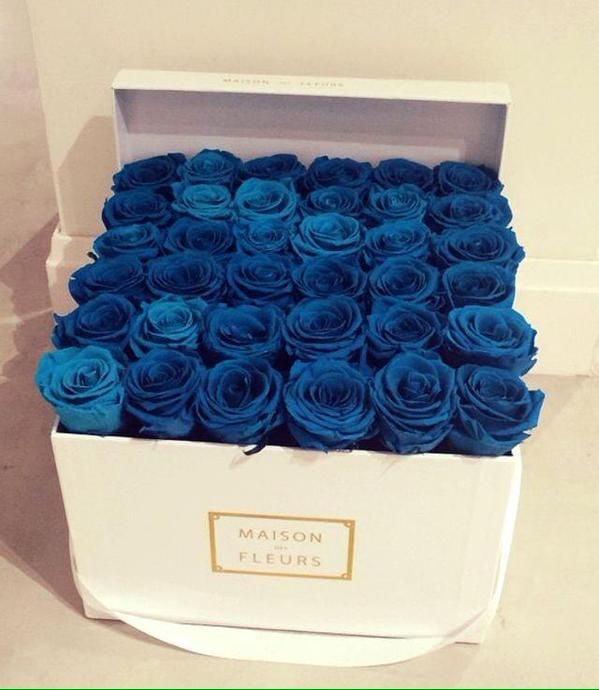 En Güzel Çiçekler ve Anlamları-4