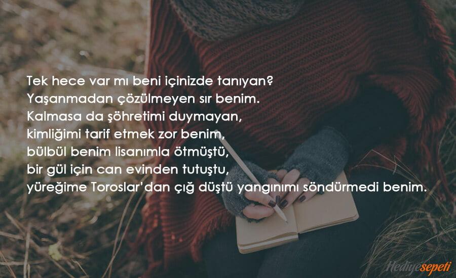 sevgililer günü şiirleri