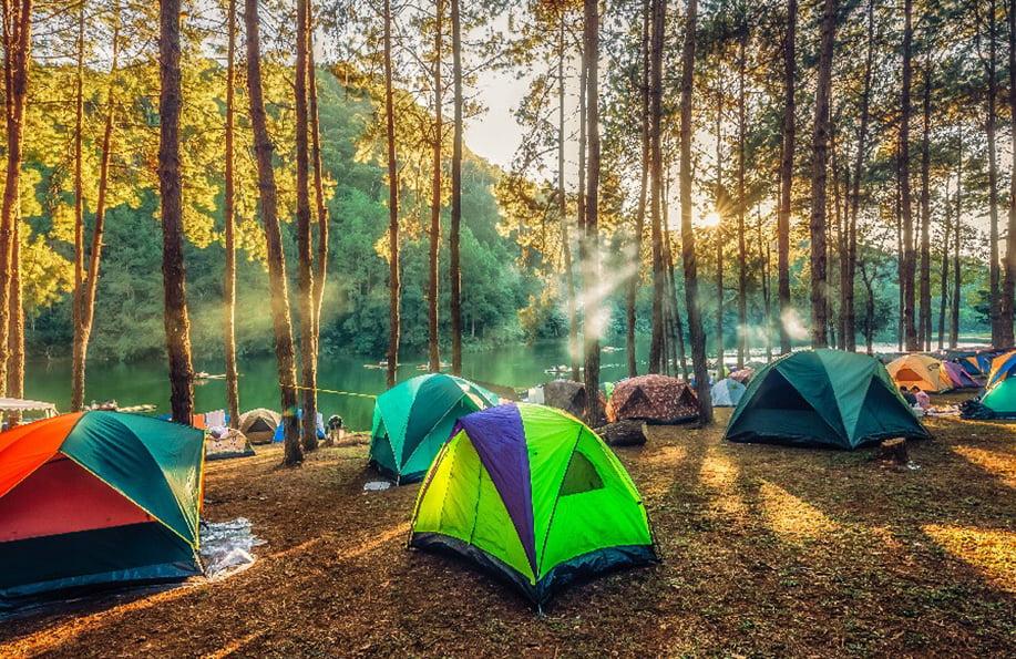 yedigöller kamp alanları