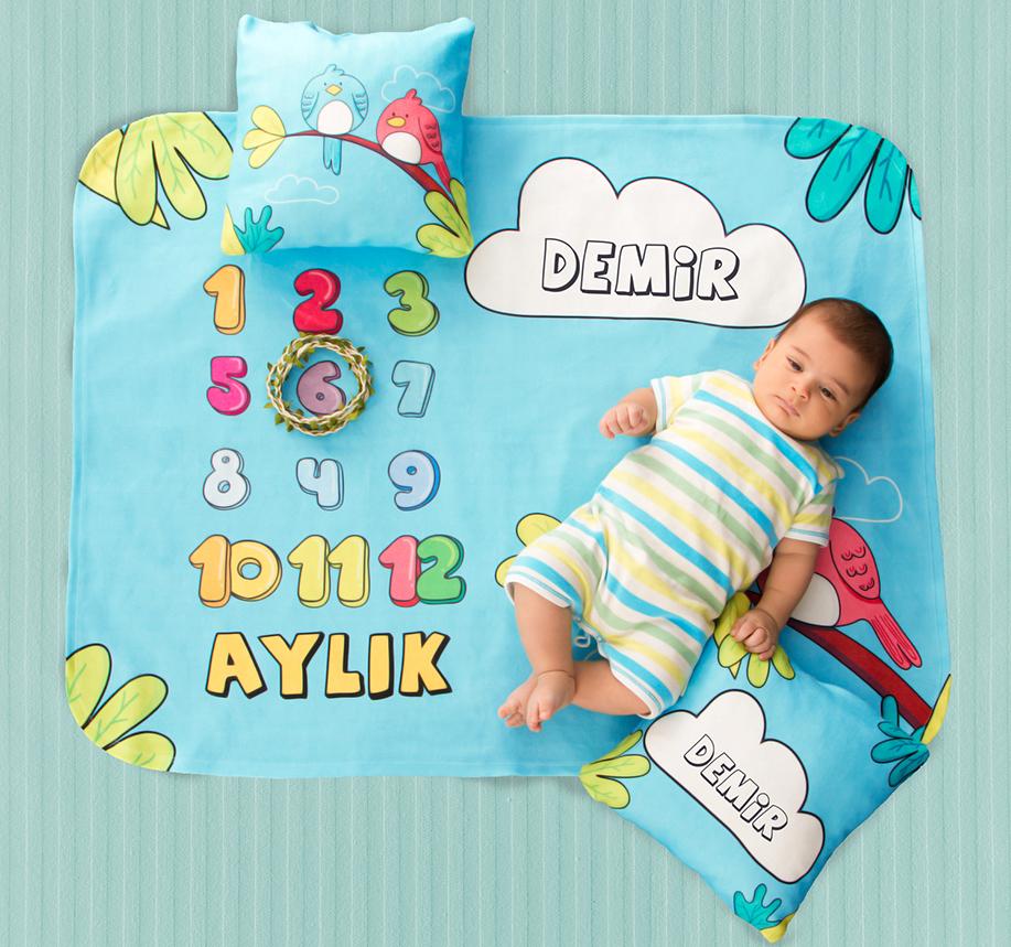 bebek aylık konseptleri