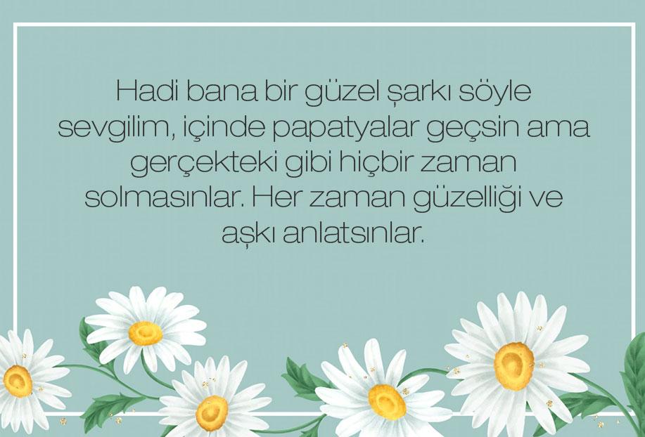 en güzel çiçek papatya sözleri